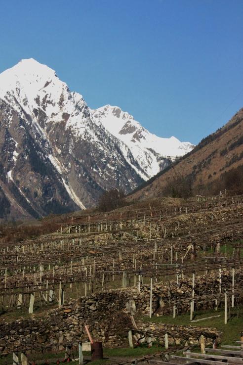 Val d'Aosta 118