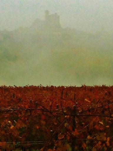 autumn 001